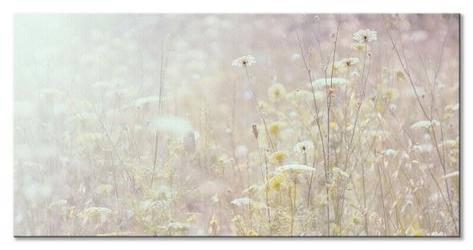 Summer meadow - obraz na płótnie