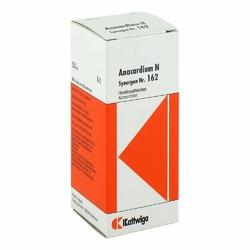 Synergon 162 Anacardium N Tropfen