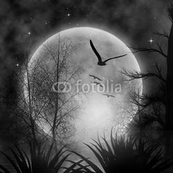 Obraz na płótnie canvas dwuczęściowy dyptyk księżyc