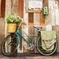 Obraz rocznika rower