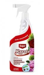 Karate spray – zwalcza szkodniki roślin domowych – 750 ml target