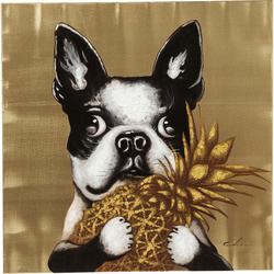 KARE Design :: Obraz Touched Dog with Pineapple 80x80cm