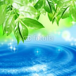 Obraz na płótnie canvas czteroczęściowy tetraptyk Liście kołyszące się na powierzchni wody
