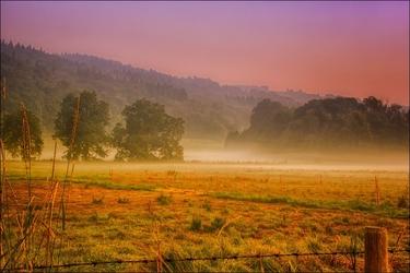 Poranna mgła – plakat wymiar do wyboru: 100x70 cm