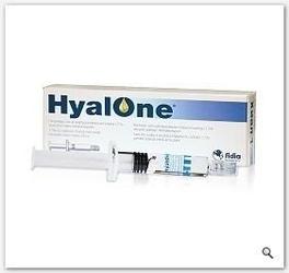 Hyalone roztwór do wstrzykiwania 60mg4ml x 1 ampułko-strzykawka