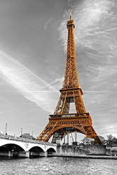 Fototapeta Wieża Eiffla 017p