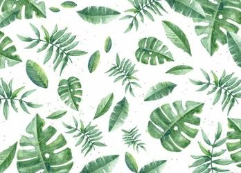 Tropikalne liście - fototapeta