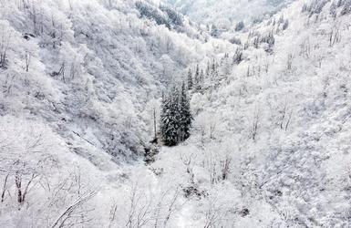 Fototapeta biała dolina fp 1777