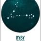 Znak zodiaku, ryby - plakat wymiar do wyboru: 20x30 cm