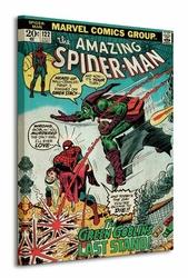 Spider-Man Green Goblin - Obraz na płótnie