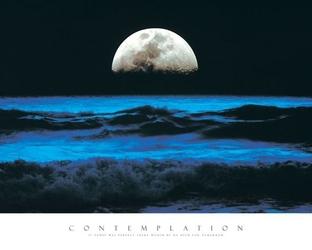 Contemplation - reprodukcja
