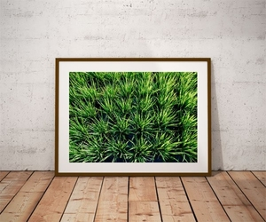 Rice - plakat premium wymiar do wyboru: 91,5x61 cm