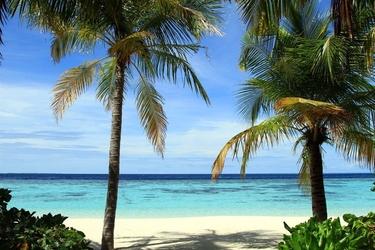 Fototapeta wakacyjna plaża fp 1530