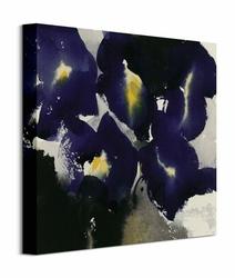 Iris Laevigata - Obraz na płótnie