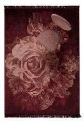 Bold monkey dywan stitchy roses 170x240 bm60006