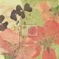 Fototapeta romantyczny kwiat