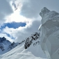 Fototapeta śnieżny wilk fp 1703