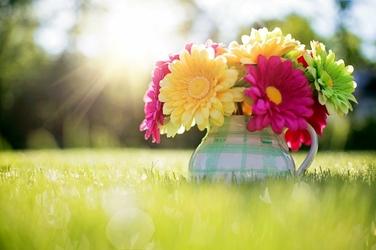 Fototapeta kwiaty w kolorowym dzbanku FP 764