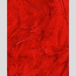 Dekoracyjne piórka puchate 3 g - czerwone - CZE