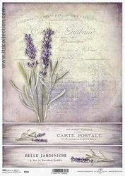 Papier ryżowy ITD A4 R982 lawenda