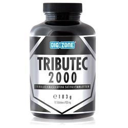 BIG ZONE Tributec 2000 - 90tabs