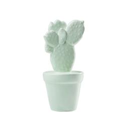 KARE Design :: Dekoracja Kaktus Mint – wzór 2 - wzór 2