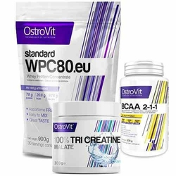 OSTROVIT WPC 80.eu Standard - 900g + 100 Creatine Monohydrate - 300g + Extra Pure BCAA 2-1-1 - 200g - Strawberry  Pure  Pure