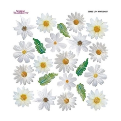 Termofolia do Sospeso - White Daisy - BIASTO