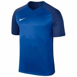 NIKE Dziecięca Koszulka Piłkarska Dry Team Trophy III Football Jersey 881484-463