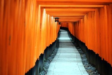 Fototapeta Japonia Fushimi Inari Taisha ścieżka FP 2224
