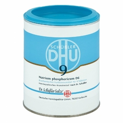 Biochemie Dhu 9 Natrium phosph. D 6 Tabl.