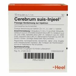 Cerebrum Suis Injeele 1,1 ml