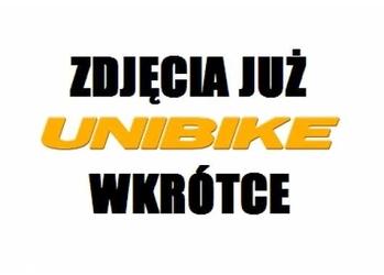 Rower trekingowy Unibike Globetrotter Man 2019