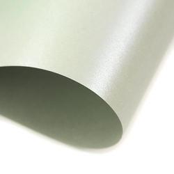 Papier kartonowy 130 g A4 - srebrny - SRE