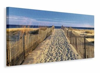 Pathway to the Beach - Obraz na płótnie