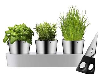 Zestaw 3 doniczek na zioła, Gourmet + nożyczki WMF
