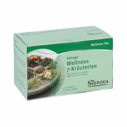 Sidroga Wellness 7 Ziół herbata w saszetkach