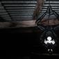 Black spider-man - plakat wymiar do wyboru: 84,1x59,4 cm
