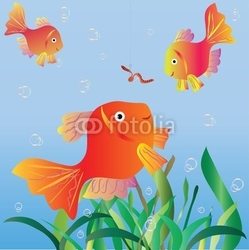 Plakat na papierze fotorealistycznym małe ryby patrzą na robaka na haku.