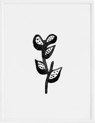 Plakat plant 30 x 40 cm