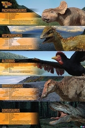 Walking with dinosaurs dino profiles - plakat