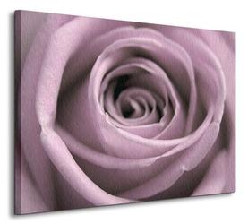 Pastelowa róża - obraz na płótnie
