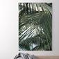 Obraz na płótnie - exotic palms , wymiary - 60cm x 90cm