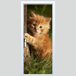 Fototapeta na drzwi kotek 180p