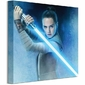Star Wars: The Last Jedi Rey Lightsaber Guard - obraz na płótnie