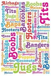 Boob words - plakat