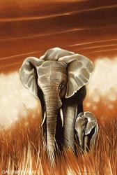Słoń z Dzieckiem Big Mama - plakat