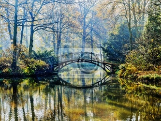Fototapeta jesień - stary most w parku jesienią misty