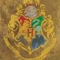 Harry potter hogwarts crest - plakat