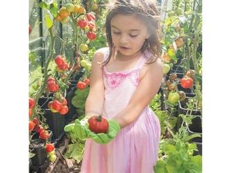 Zielone rękawice do prac ogrodowych